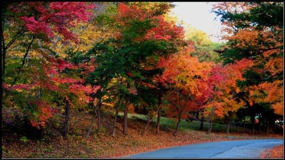 Fall Season around Seoraksan