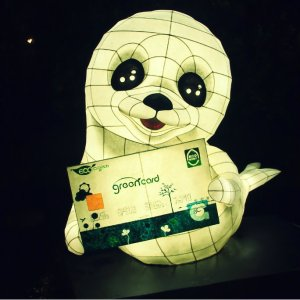 Mulbeomi as the GreenCard's Mascot