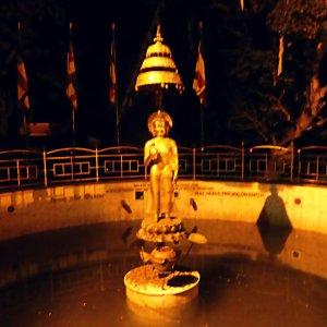 World Peace Pond