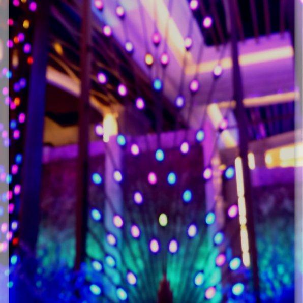 Blue purple Peacock lounge divider, The Galaxy Macau