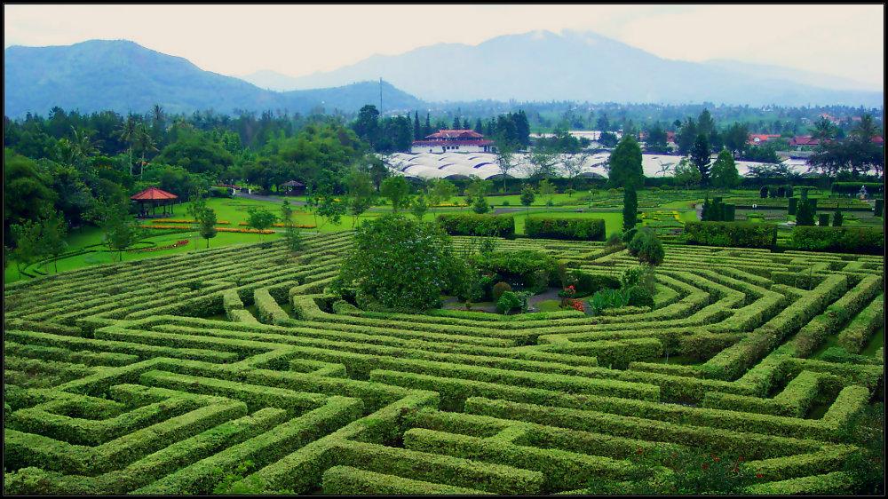 Labirynth or Maze Garden