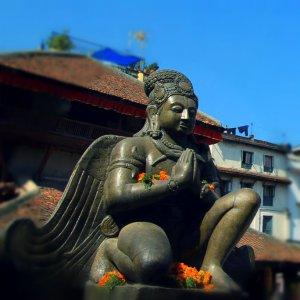 Garuda, yang tetap setia