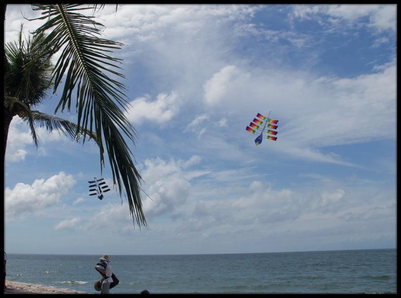 Kites in Bali beach