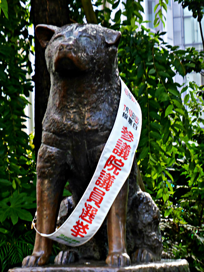 Hachiko, symbol of Loyalty, Shibuya