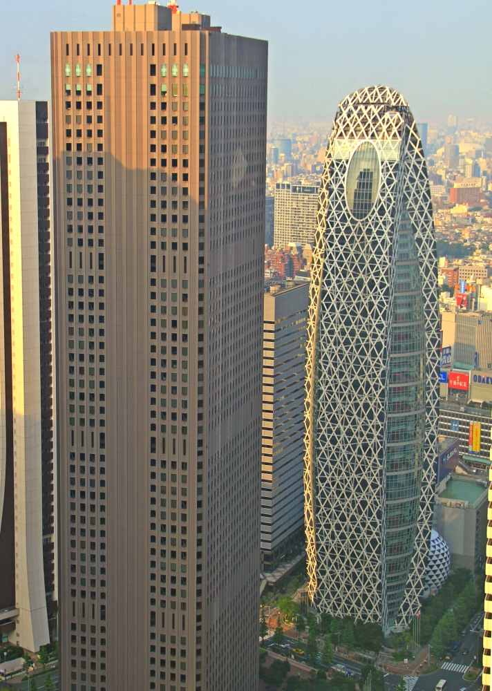 View from Tokyo Metropolitan Gov. Building - Mode Gakuen Cocoon Tower