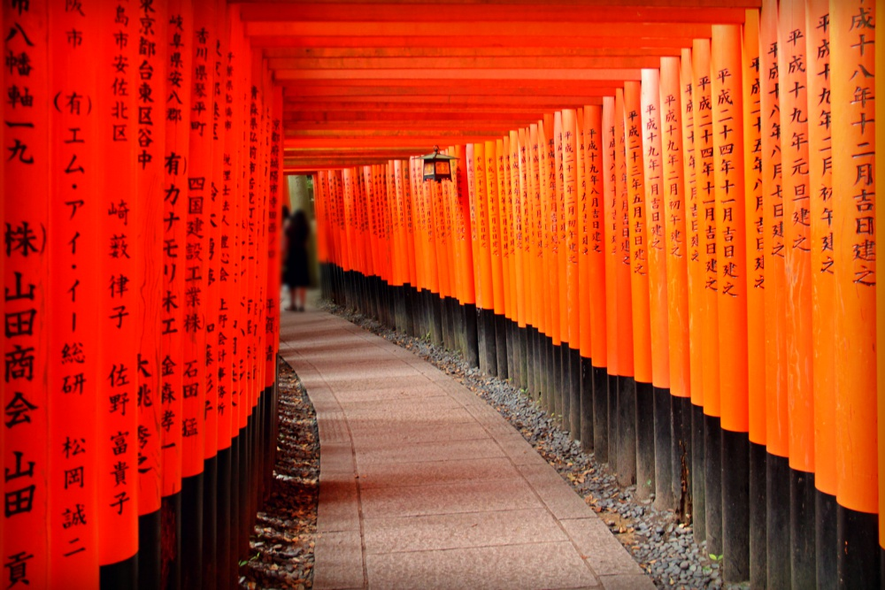 The Torii of Fushimi Inari, Kyoto