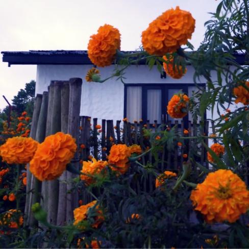 My room in Raniban Retreat, Pokhara