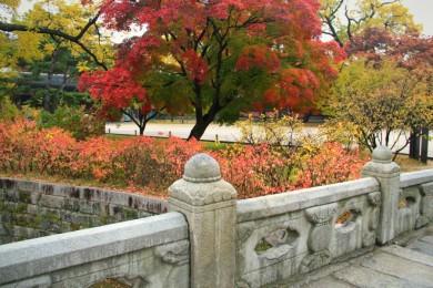 The lotus petal decor of Geumcheongyo