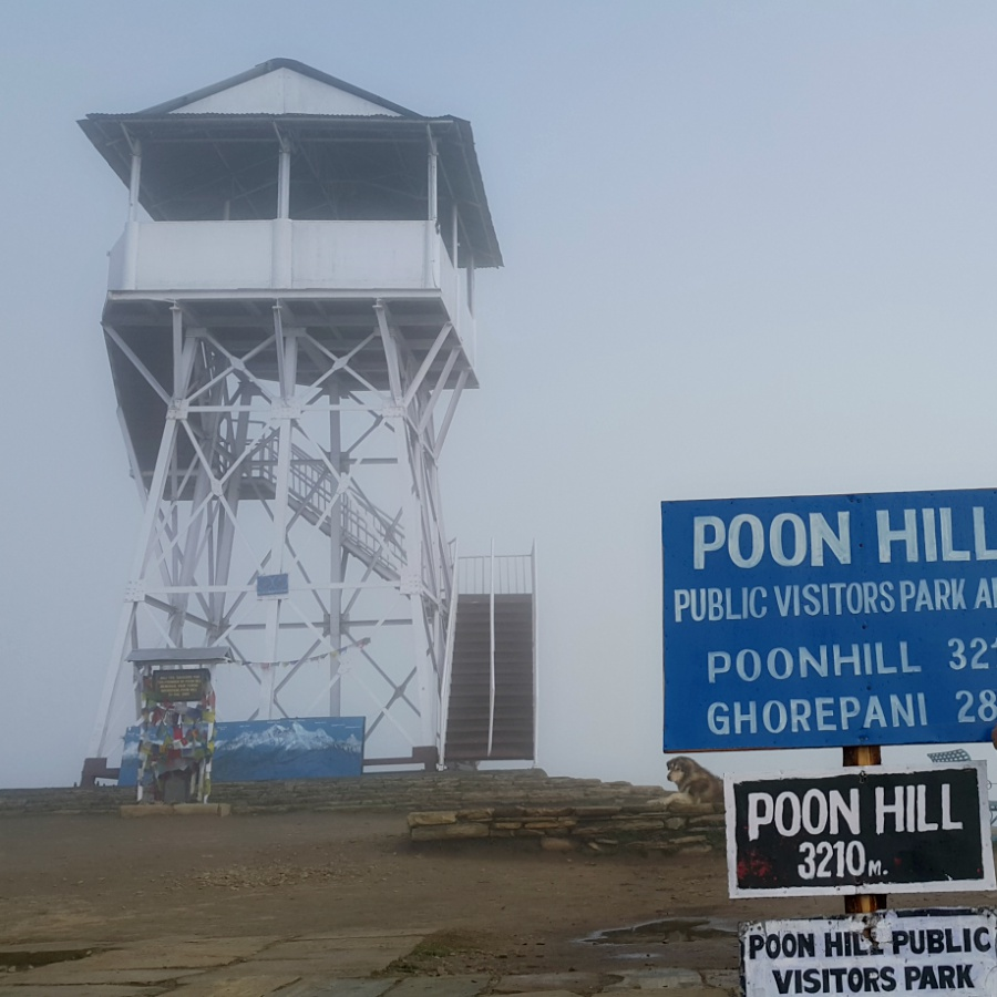No view at Poonhill