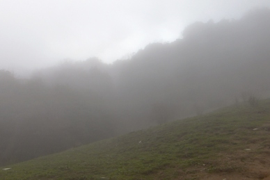 Foggy around