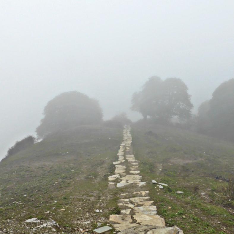 The trekking path
