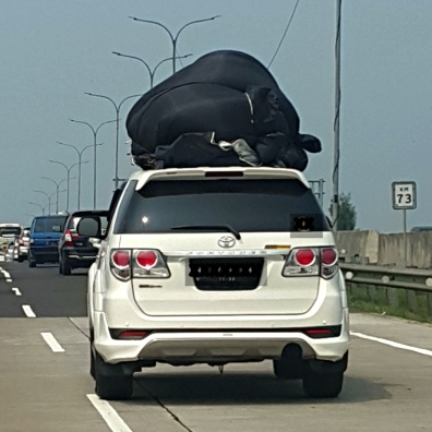 What do you think of the load on this car?