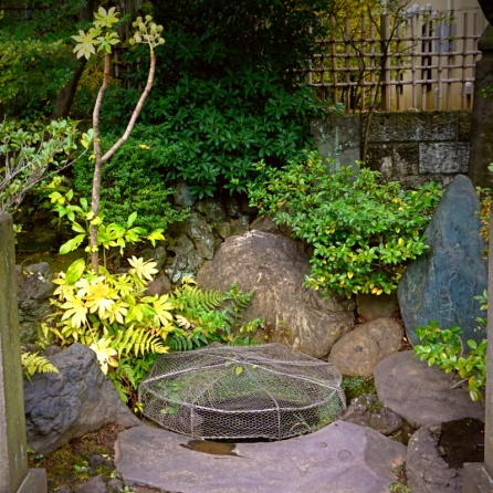 The well of Kira's head washing