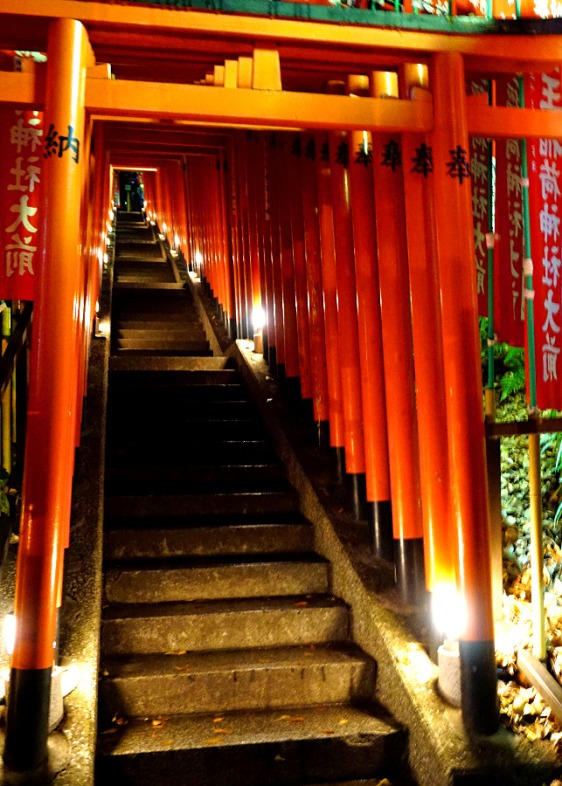 Torii in Hie Jinja Shrine - at night from the base