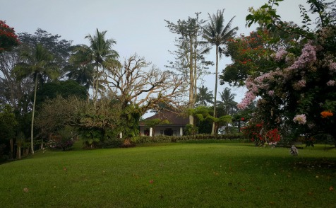 MesaStila - The main park