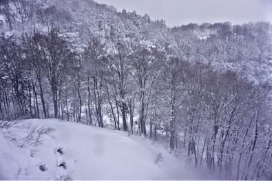 View from the Gondola's window of Gala Yuzawa