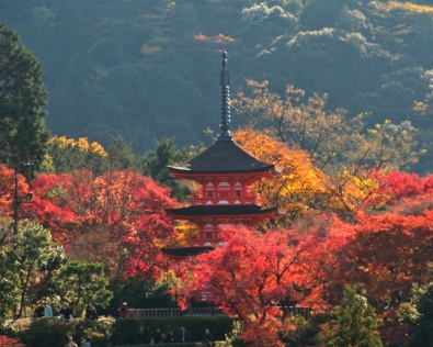 A pagoda among the autumn leaves