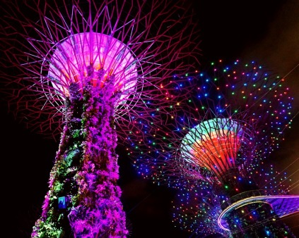 Super Trees At Night, Singapore
