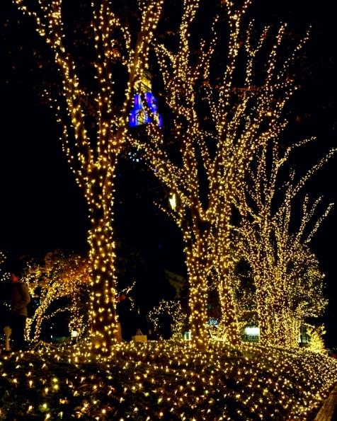 Shinjuku around Christmas and New Year