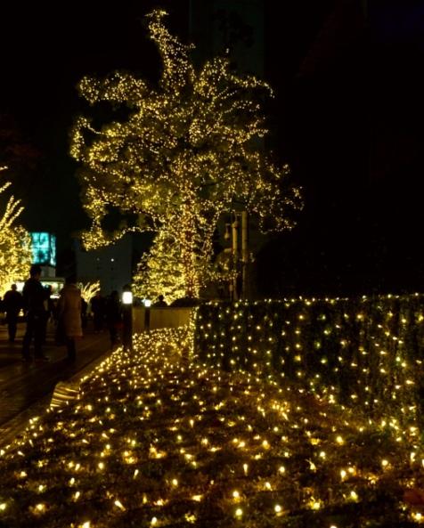 Shinjuku Illuminations