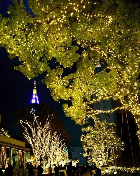 Shinjuku Illuminations at Christmas