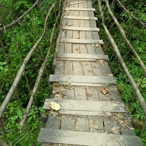 The old wooden bridge